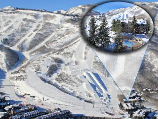 Best Snow Flower 3BR Ski In/Ski Out at Park City