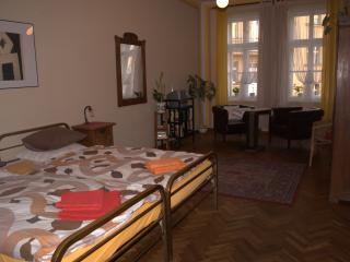 Safe and Quiet Apartment in the Heart of Prague, Praga