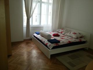 4 Bedrooms renovated  flat  - brand new -downtown, Prague