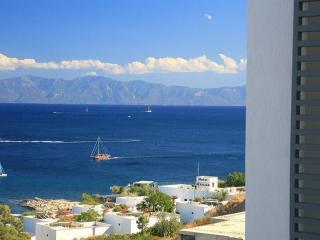 235- 2 Bedroom Vacation Apart For Rent In Bodrum, Bodrum City