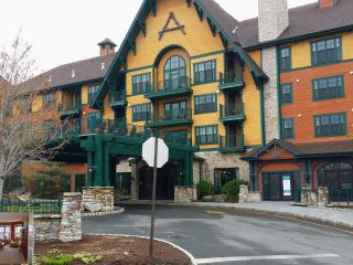 The Appalachian Largest 1 BR luxury Condo/Hotel., Vernon