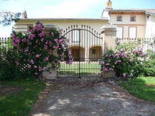Large farmhouse near Gaillac with private pool