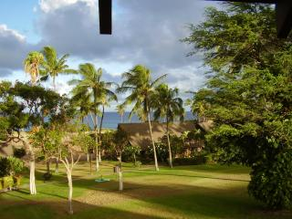 1214 Kepuhi Beach Ocean Front with Car for $150, Maunaloa