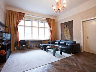 Spacious  Center 2 bed 1.5 bath, Praga