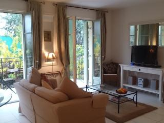 Luxury Aparment in Lorgues South of France