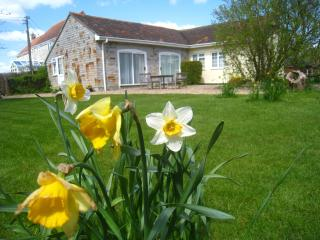Somerset holiday cottage - Sleepy Hollow - Nooze, Glastonbury