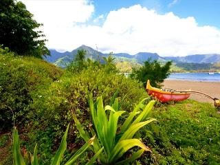 NEW Suite** NEW Owner** AVIS car included!! BE OUR 1st guests CALL NOW, Princeville