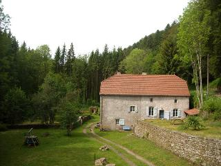 House in a beautiful forest by a river in France, Plombieres les Bains