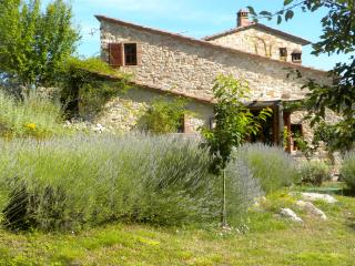 1 Bedroom Cottage in the Chianti Hills of Tuscany, Castellina In Chianti