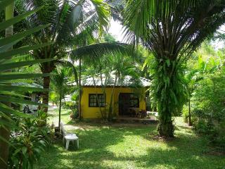 Small Yellow Bungalow Nai Harn