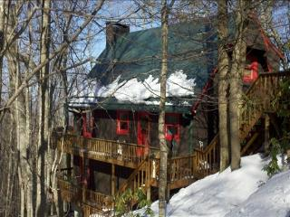 5 Bedroom Alter Ego Ski Chalet in Beech Mountain