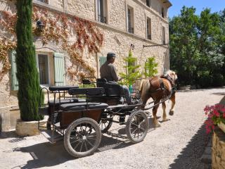 Sait-remy-de-Provence holiday villa rental with sw, Saint-Remy-de-Provence