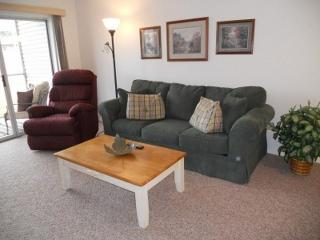 Charming Home Away from Home * Pets * Wifi, Branson