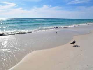 'Pelican Pointe Unit 1204' Relax and Renew in this Gulf Front Retreat!!!, Orange Beach