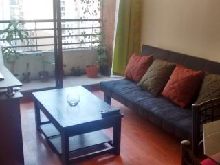 3 Bedroom Apartment for Groups and Families, Santiago