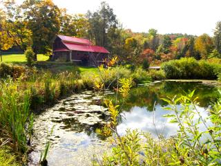 TWIN PONDS, Pet Friendly 6 room Farmhouse on 20 ac, Pittston