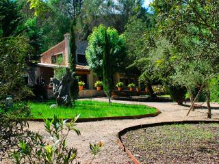 Villa Puigpunyent settled in a charming village