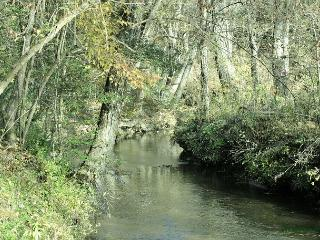 Little Singing Creek- to fish in this cozy, secluded bend just for 2 in love!, Mineral Bluff