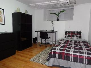 Spacious 3 BDR Downtown Apartment, Ottawa