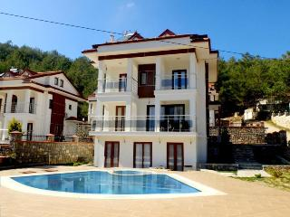 Holiday Villa With Private Pool and Garden, Oludeniz