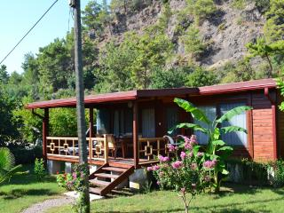 Lovely bungalow near Antalya and the Mediterranean Sea, surrounded by orange trees, Cirali