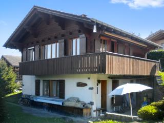 Beautiful flat in a chalet in the Swiss Alps – 20m from the slopes!, Aeschiried