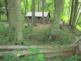 Otter River Farms Rustic Cabins, Port Burwell