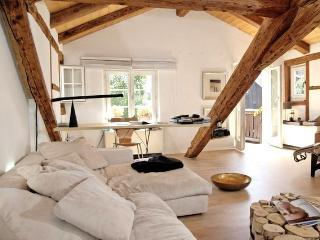 Swiss charming attic,fire place,lake view, Kilchberg