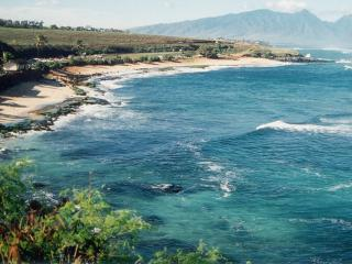 GROM'S HIDEAWAY, Paia