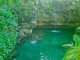 Exquisite Oasis in Playa  near beach and 5th ave!, Playa del Carmen