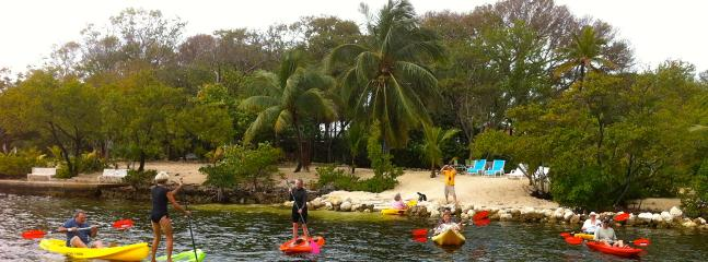 Our fleet of Kayaks and Paddleboards Largo Sound