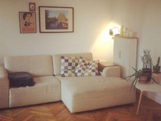 Lovely cosy Copenhagen apartment Lindevang metro, Copenhague