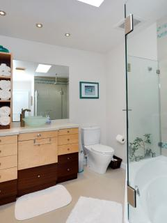 The hall bath has an exotic wood vanity and high-end shower and sink