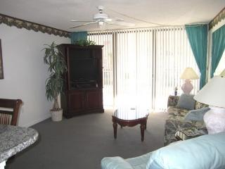 Beach Condo Rental 214, Cape Canaveral