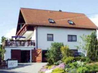 Family-friendly apartment w/pool, Rabenau