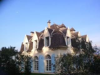 French Country Chateau to rent 45 mins Biarritz, Sauveterre-de-Bearn