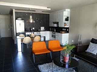 Designer 1BR apartment, De Waterkant, Cape Town