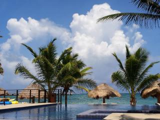 :) ahhh..ABSOLUTE HEAVEN. Peaceful 1bd Oceanfront, Puerto Morelos