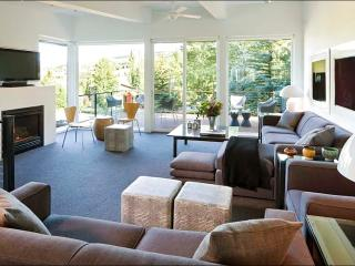 Beautiful Mountain Contemporary Home - Designer touches throughout (1422), Snowmass Village