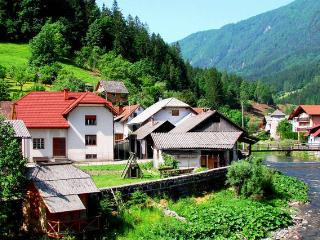 Fabulous large Slovenian house to rent in Luce