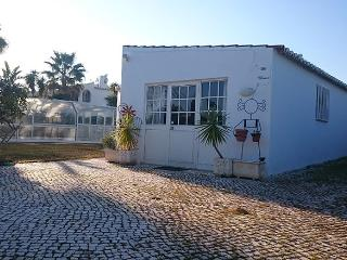 Nice Villa for long term rent, Lagoa