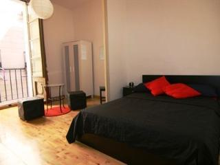 DOUBLE BEDROOM IN CITY CENTRE, Barcelone