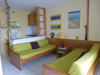 Nice apartment with WIFI, 30m from the main beach., Biarritz
