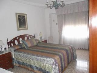 Apartment in Elche 100017