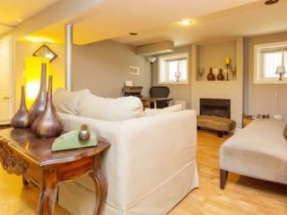 Private, cozy and cute Garden/basement Unit., Chicago