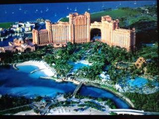 The Reef Atlantis, Paradise Island (Bahamas)