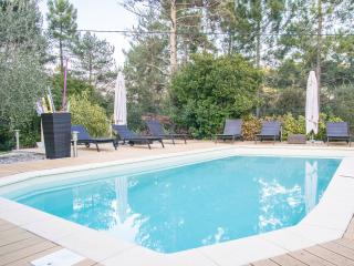 Villa South of France for 5, Montauroux
