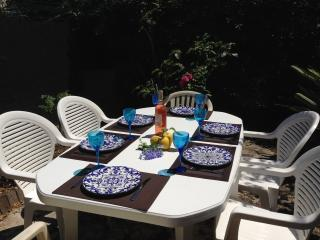 Tiny garden Great private outdoor dining area lemon tree