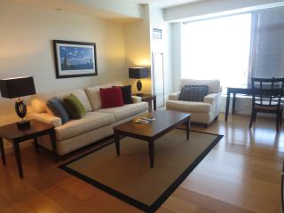 GSA Luxury 2BR 'Heart of Fenway' Apt+Pool,Gym,WiFi, Boylston