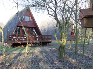 Cute wood cabin by nature reserve, Grafham